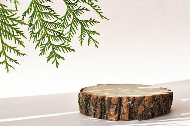 Eine holzbühne mit einem grünen zweig mit schatten für eine präsentation auf beigem hintergrund. das podium besteht aus natürlichem material mit platz für text. minimalistische branding-szene.