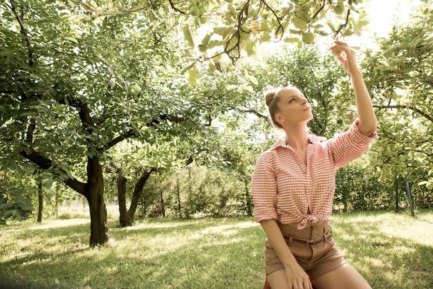 Eine junge erwachsene frau, die an einem sonnigen tag in ihrem garten bio-äpfel erntet.