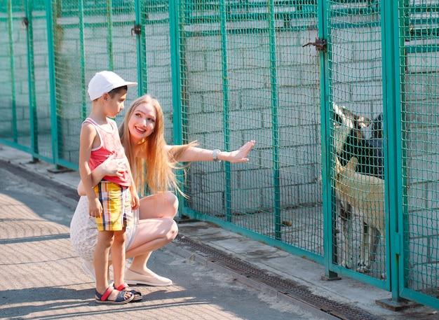 Eine junge familie sucht ein haustier in einem tierheim.