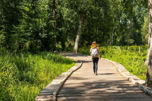 Eine junge frau auf dem fußweg entlang einer fußgängerbrücke zwischen la garette und coulon, marais poitevin das grüne venedig, in der nähe der stadt niort, frankreich