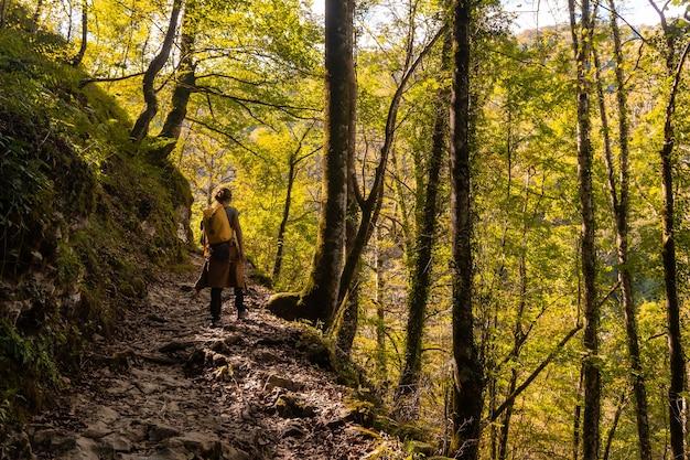 Eine junge frau auf dem weg zur passerelle de holtzarte de larrau im wald oder dschungel von irati, nord-navarra in spanien und den pyrenäen-atlantiques von frankreich