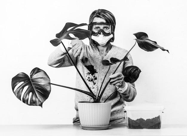 Eine junge frau, die eine medizinische maske und eine schutzbrille trägt, schaufelt schmutz in einen blumentopf mit einer tropischen monstera-zimmerpflanze