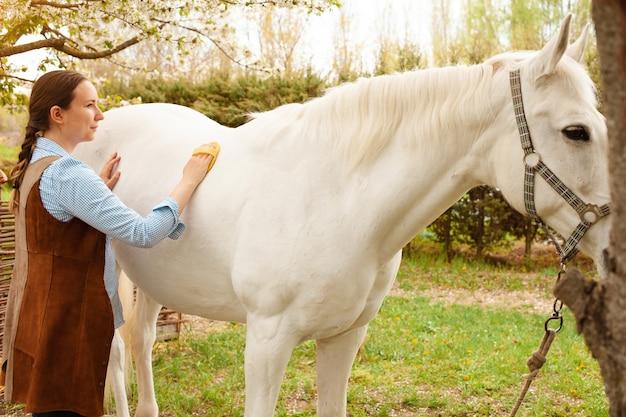 Eine junge frau reinigt ein weißes pferd mit einer gelben bürste in der natur