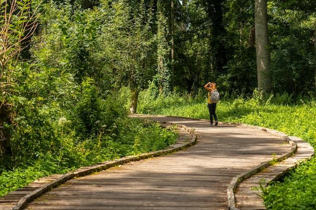 Eine junge frau zu fuß auf der wanderung auf dem weg zwischen la garette und coulon, marais poitevin das grüne venedig, in der nähe der stadt niort, frankreich