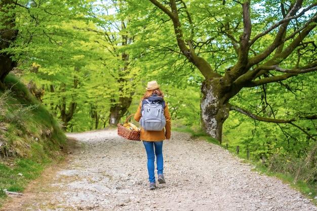 Eine junge kaukasische brünette, die einen weg mit einem korb entlang geht, der mit ihrer familie zum picknick geht