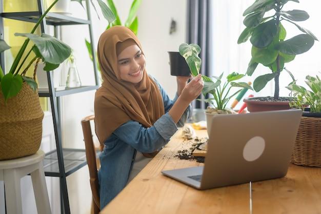 Eine junge muslimische unternehmerin, die mit laptop arbeitet, präsentiert zimmerpflanzen während des online-live-streams zu hause und verkauft online-konzepte