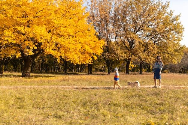 Eine junge mutter mit einem kind und einem mops auf einem herbstspaziergang in einem bunten park.