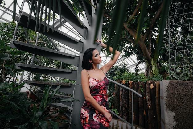 Eine junge schöne brünette posiert in der nähe einer wendeltreppe im botanischen garten inmitten des dichten dickichts des tropenwaldes. spa.