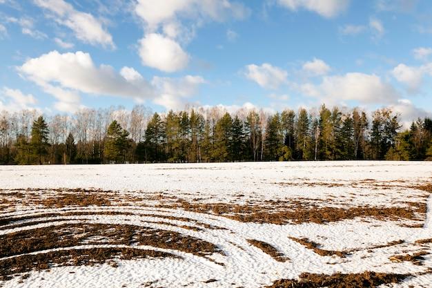 Eine kleine landstraße führt im winter auf einem feld vorbei.