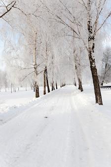 Eine kleine straße in der wintersaison.