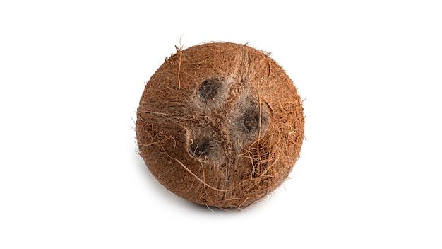 Eine kokosnuss.