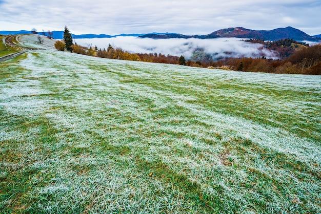 Eine lichtung im frost nach einer frostigen nacht in den mit wäldern bedeckten bergen