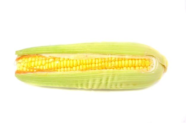 Eine maiskolben isoliert auf weißem hintergrund