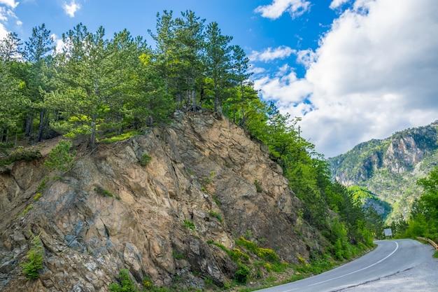 Eine malerische straße führt durch die berge und schluchten in montenegro.