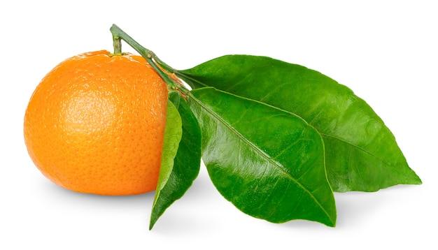 Eine mandarine mit großen blättern lokalisiert auf weiß