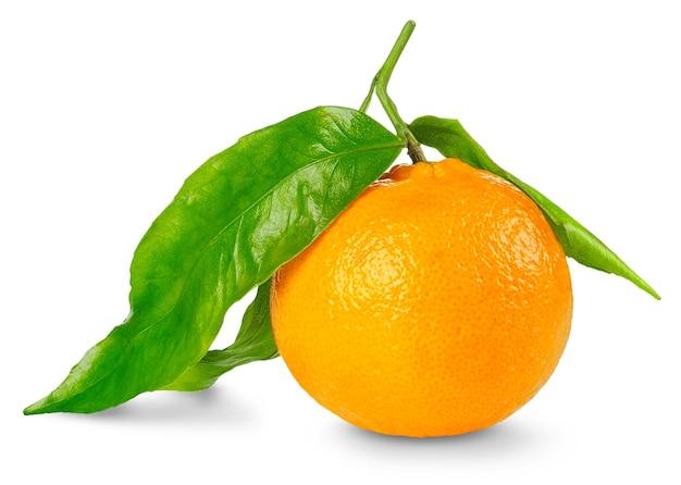 Eine mandarinenfrucht mit großen blättern lokalisiert auf weißem raum