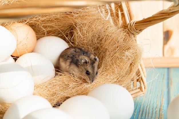 Eine maus in einem korb mit weißen eiern auf einem türkisfarbenen holztisch. die produkte des hofes.