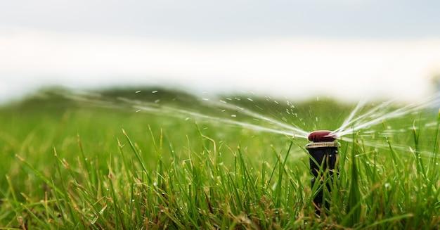 Eine nahaufnahme eines wassersprühgeräts zur bewässerung eines rasens.