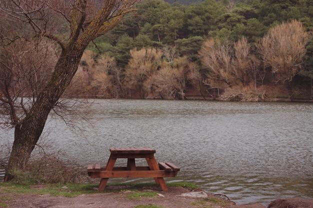 Eine natürliche landschaft von see, von gelben und grünen bäumen und von bank