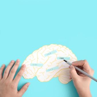 Eine person, die den ideentext auf papierausschnittgehirn gegen den blauen hintergrund scheuert