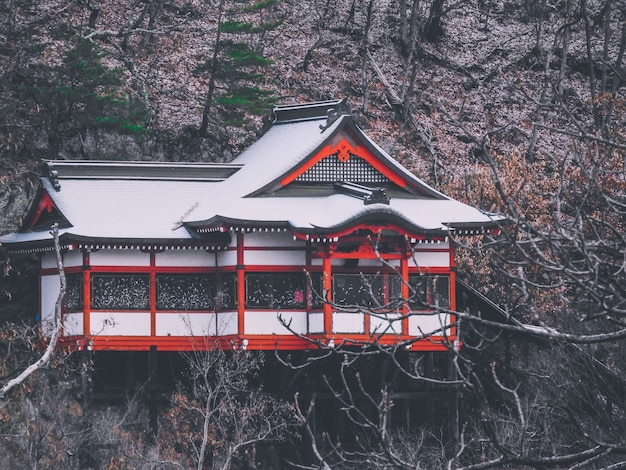 Eine schöne aufnahme eines hauses im japanischen stil auf dem berg