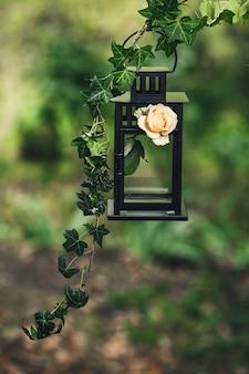 Eine schwarze metalllaterne, verziert mit einem zweig efeu und einer rosenblume.