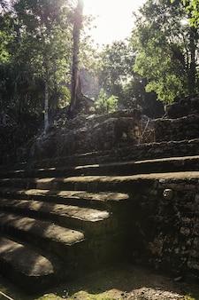 Eine sonne mit den bäumen und den ruinen mayas in coba