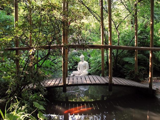 Eine statue von buddha, die in einem teich sitzt. ein paar rote fische schwimmen im teich.
