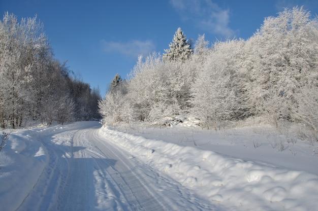 Eine straße, die im winter durch einen schneeweißen wald in die ferne führt