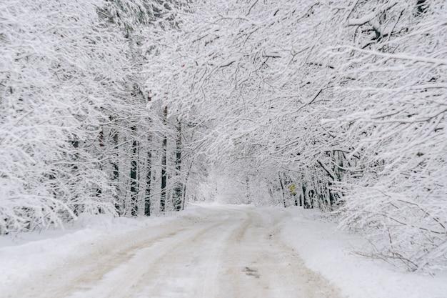 Eine straße in einem schneebedeckten winterwald
