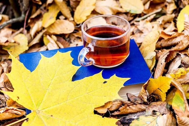 Eine tasse tee und ein gelbes ahornblatt auf einem buch im herbstwald. bücher in der natur lesen