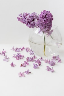 Eine vase mit wasser, in der lila blumen schwimmen