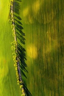 Eine vogelperspektive eines grünen feldes und einer straße in europa. natur von weißrussland. eigenes grünes feld bei sonnenuntergang und straße.