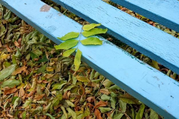 Einfache blaue holzbank auf dem boden bedeckt mit gefallenen gelben herbstblättern nahaufnahme