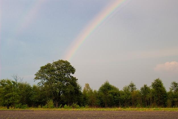 Einfache sommerlandschaft mit regenbogen