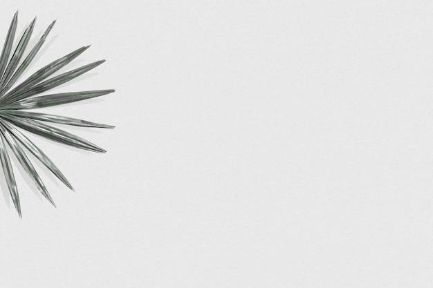 Einfacher social media banner hintergrund des tropischen palmblattes
