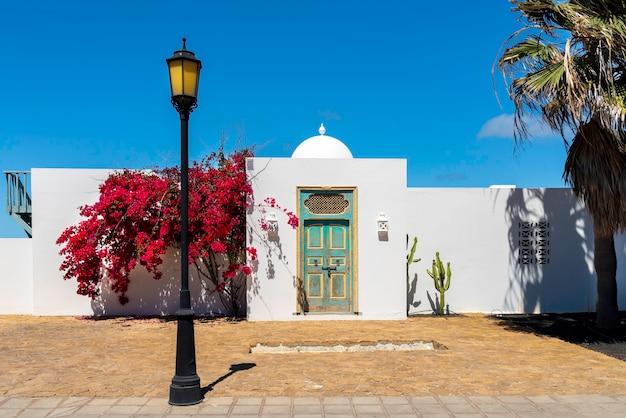 Eingang zu einem rustikalen haus mit arabischen elementen und roten blumen an der seitenwand.