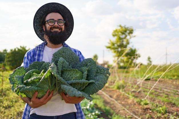 Eingelegter kohl in den händen eines lächelnden männlichen landwirts. mann-bauer, der kohl auf grünem laub hält. erntekonzept