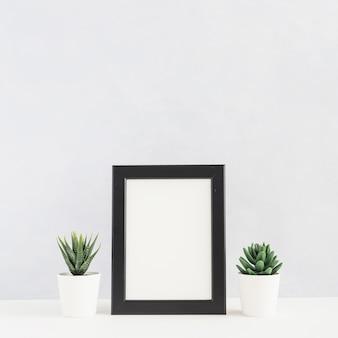 Eingemachte kaktuspflanze zwischen dem bilderrahmen auf schreibtisch gegen weißen hintergrund