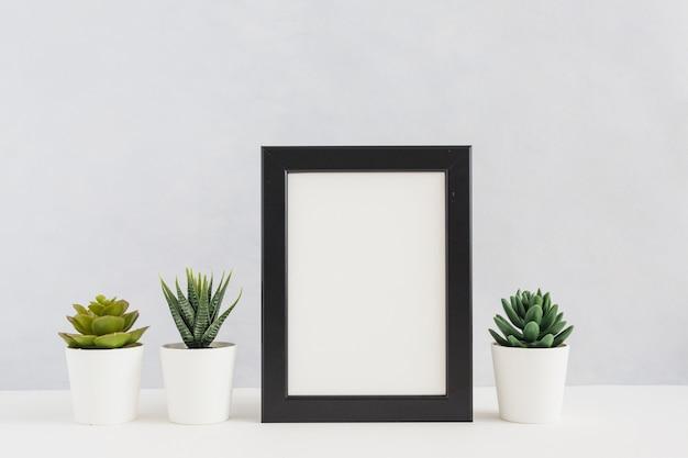Eingemachte kaktuspflanzen mit dem leeren bilderrahmen gegen weißen hintergrund