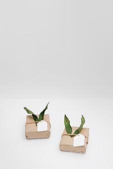 Eingewickeltes geschenk mit blättern und tags auf weißem hintergrund