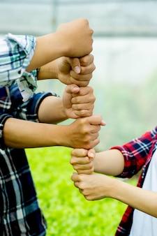 Einheit, teamarbeit einheit gruppe einheit der geisteskraft legen sie ihre hände in eine vertikale linie und zeigen sie entschlossenheit und energie. teamarbeitskonzept