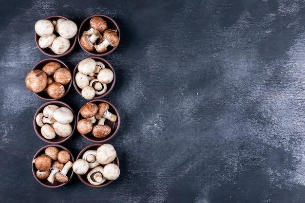 Einige weiße und braune pilze in schalen auf dunklem tisch