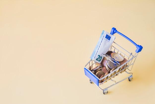 Einkaufsauto mit konzept des geldes