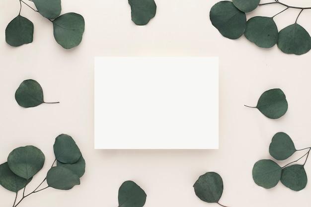 Einladungskartenmodell mit eukalyptuszweig auf beigem hintergrund. flache lage, draufsicht mit kopienraum