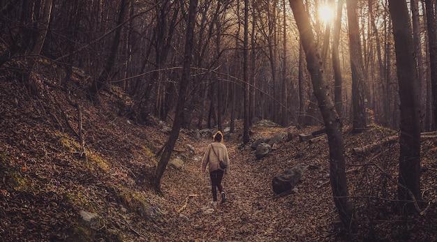 Einsame frau, die im wald mit kahlen bäumen während des sonnenuntergangs geht