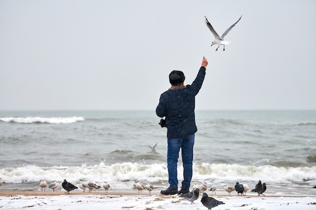 Einsamer alter mann, der möwen, möwen und andere vögel auf see füttert