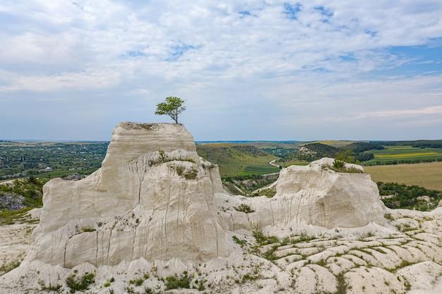 Einsamer baum im kalksteinbruch in moldawien