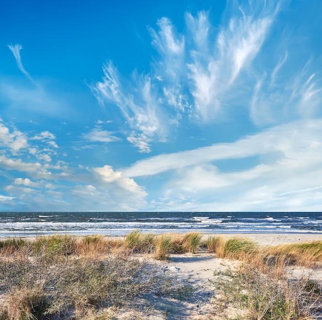 Einsamer strand in der nähe des dorfes kloster. insel hiddensee in norddeutschland im herbst