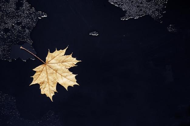 Einsames ahornblatt auf schwarzem nassem glas. traurige stimmung im herbst.